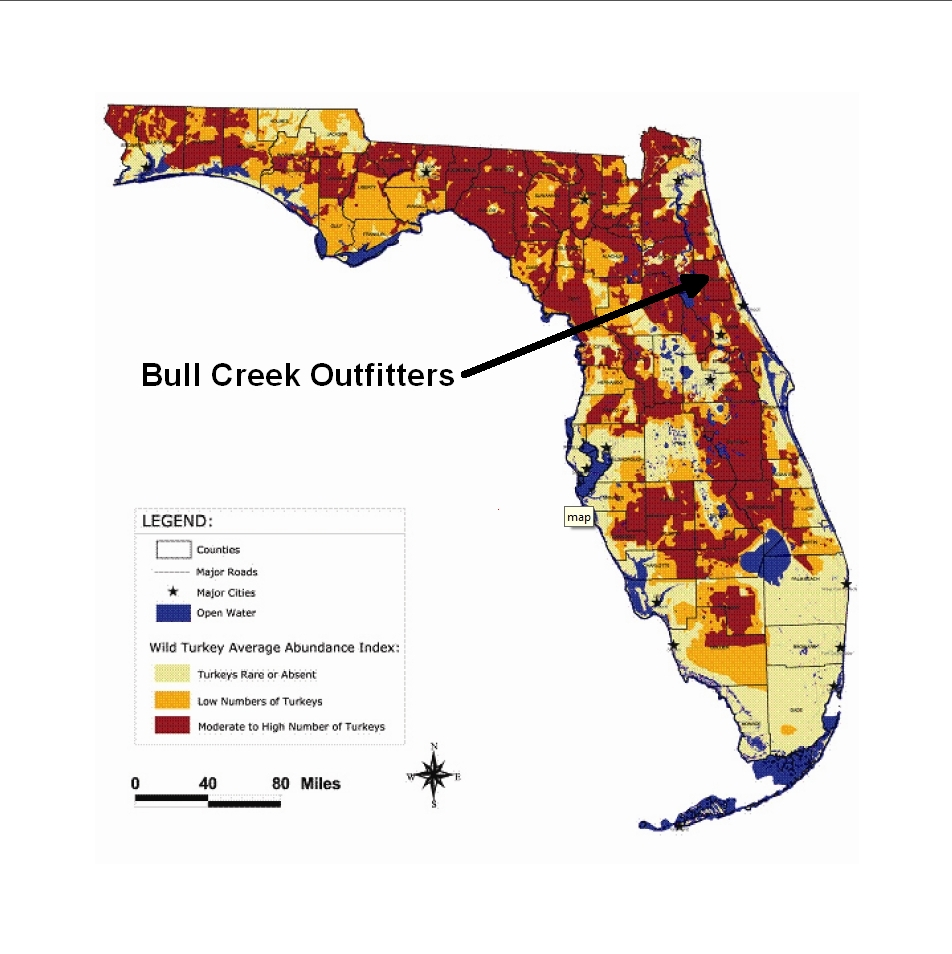 Florida Turkey Population Distribution Map Bull Creek - Florida county map with population