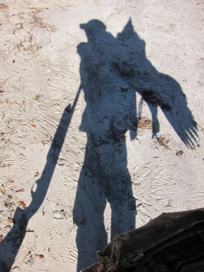 Silhouette of a gobbler on my back 1063