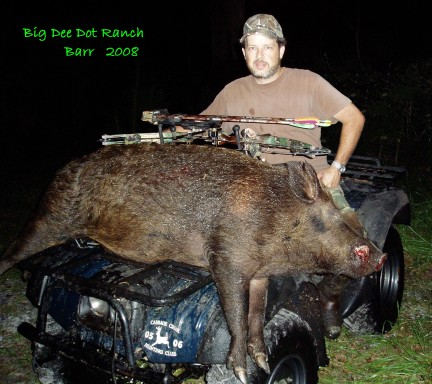 Big Dee Dot Ranch Barr Hog by Bow - Larry Stephens 2