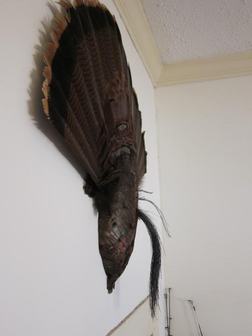 Triple Beard Fan mount with Breast Plate 4394