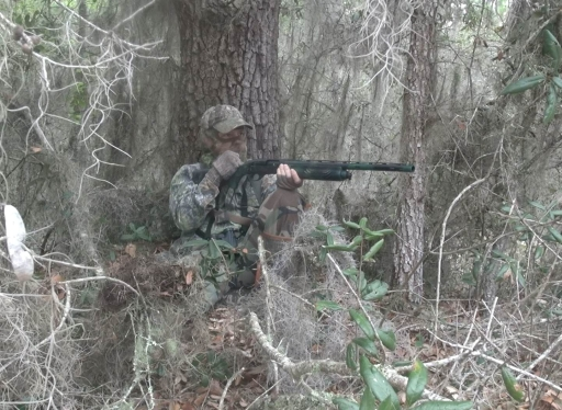 Turkey Hunt - Oak Tree Set Up