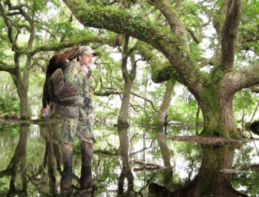 Osceola Gobbler Flooded Oak Hammock - Larry Stephens